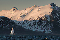 A ski/sail expedition under sail in the fjords of the Lyngen Alps, Norway.