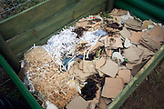 Cardboard and shredded paper composting in compost bin
