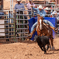 Photo: Jeffery Jones<br /> Frank Florez chases his calf out of the chute Saturday during the New Mexico High School Rodeo Association State Finals at Red Rock Park. Florez had a no time for this attempt.