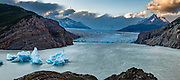 Icebergs from the Southern Patagonian Ice Field float on Lago Grey, in Torres del Paine National Park, Chile, Patagonia, South America. Grey Glacier has receded 4 km and lost 17 square kilometers from the mid 1900s through 2010.  Torres del Paine National Park is listed as a World Biosphere Reserve by UNESCO. This image was stitched from multiple overlapping photos.