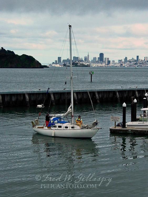 Returning to Dock ~ Tiburon