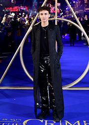 Stevie Ruffs attending the Fantastic Beasts: The Crimes of Grindelwald UK premiere held at Leicester Square, London.