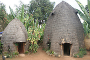 Africa, Ethiopia, Omo region, Chencha, Dorze Village Traditional elephant shaped straw hut