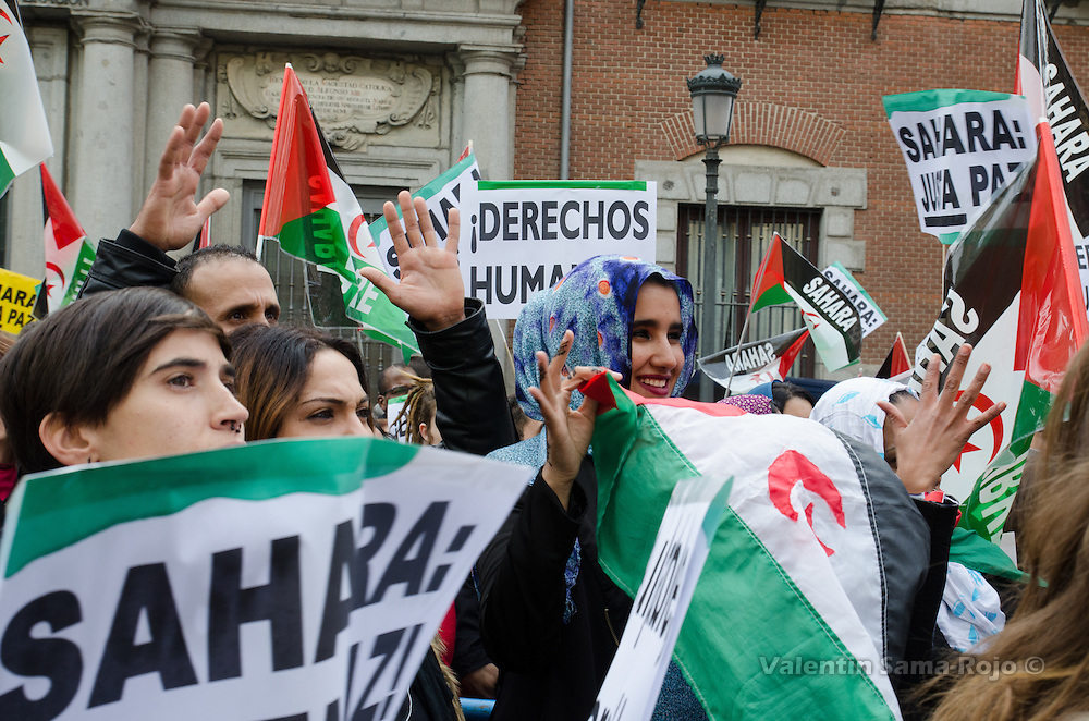 Madrid, Spain. 12th November, 2016. People doing the Sign Language sign for clapping while weaving Saharawi flags during the demonstration for a free Sahara.