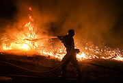Firefighters battle the Blue Cut wildfire near Cajon Pass, north of San Bernardino, Calif., August 16, 2016. The fire is currently 9,000 plus acres, with 700 personnel on scene. Fifty-seven engines, 8 crews, 8 air tankers, 2 Very Large Air Tankers (VLATS), with additional firefighters and equipment on order. There is imminent threat to public safety, rail traffic and structures. With this being a very quickly growing wildfire, evacuation instructions have been issued. An estimated 34,500 homes and 82,640 people are being affected by the evacuation warnings.  AFP PHOTO / Ringo Chiu