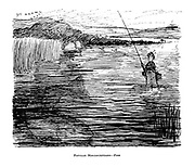 Popular Misconceptions - Fish