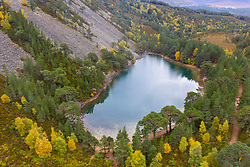 Autumn aerial view of An Lochan Uaine malso known as the Green Loch due to the striking green colour of it's water in Cairngorms National Park, Scotland, UK