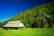 Szałasy w Dolinie Jaworzynka, Tatry Zachodnie, Polska<br /> Huts in Jaworzynka Valley, West Tatra Mountains, Poland