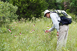 Hikers exploring wildflowers along Piedmont Ridge, Great Trinity Forest, Dallas, Texas, USA