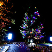 Press Preview: spectacular light trail at Christmas at Kew garden, Victoria Gate on Wednesday 21st November 2018, London, UK.