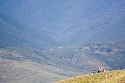 Women and children walk through the foothills of the Sierra Norte Mountains outside the town of Teotitlan del Valle, Oaxaca state, Mexico on July 27, 2008.