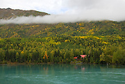 Beautiful Kenai River in fall colors. Cabin located near the Kenai Lake bridge in Cooper Landing. Tall Kenai mts. with termination dust creeping down the slope. Yellow and gold colors surround the lake and river. Cool daytime air and cold nights bring on the colors.  A great time to be in Alaska.