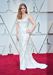 91st Annual Academy Awards - Arrivals. 24 Feb 2019 Pictured: Amy Adams. Photo credit: Jaxon / MEGA TheMegaAgency.com +1 888 505 6342