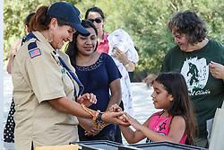 Examining corn snake, Mitchell Lake Audubon Center, San Antonio, Texas, USA.