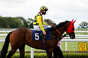 Giovanni Tiepolo ridden by David Probert (T: Henry Candy) ahead of the 12:00 Visit attheraces.com Handicap - Rogan/JMP - 14/07/2020 - HORSE RACING - Bath Racecourse - Bath, England.