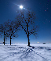 The moon wasn't even full on this night. But the clear arctic air along with the powdery snow made the moonlight extra bright.<br />