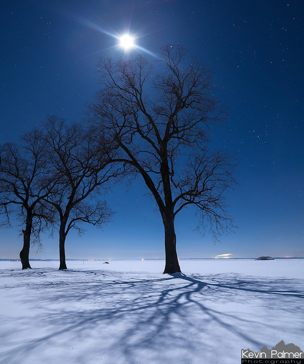 The moon wasn't even full on this night. But the clear arctic air along with the powdery snow made the moonlight extra bright.<br /> <br /> Date Taken: February 11, 2014