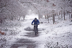 © Licensed to London News Pictures 07/02/2021.        Sevenoaks, UK. A mountain biker enjoying the cold condition with a bike ride. Freezing cold snowy weather at Knole Park in Sevenoaks, Kent. Photo credit:Grant Falvey/LNP