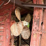 Propeller on the Evelina M. Goulart, which awaits funding for a full restoration at the Essex Shipbuilding Museum