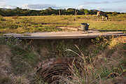 The well is the main source of water for the Makushi communities living in the North Rupununi savannah.