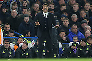 Antonio Conte, the Chelsea manager shouting from the touchline. Premier league match, Chelsea v Stoke city at Stamford Bridge in London on Saturday 31st December 2016.<br /> pic by John Patrick Fletcher, Andrew Orchard sports photography.