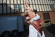 Lockhart Cattle and Local Butchering<br /> Photo by David Stubbs