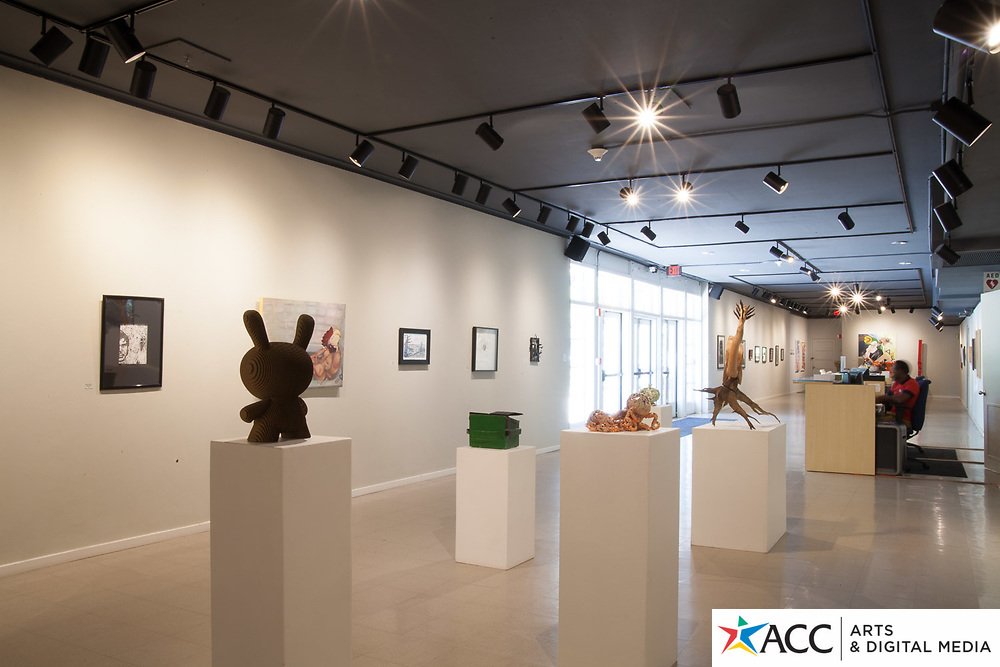 41st Annual ACC Student Art Exhibition