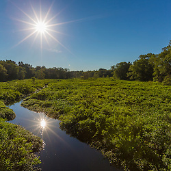 The morning sun shines down on the Winnetuxet River, a tributary of the Taunton River, in Halifax, Massachusetts.