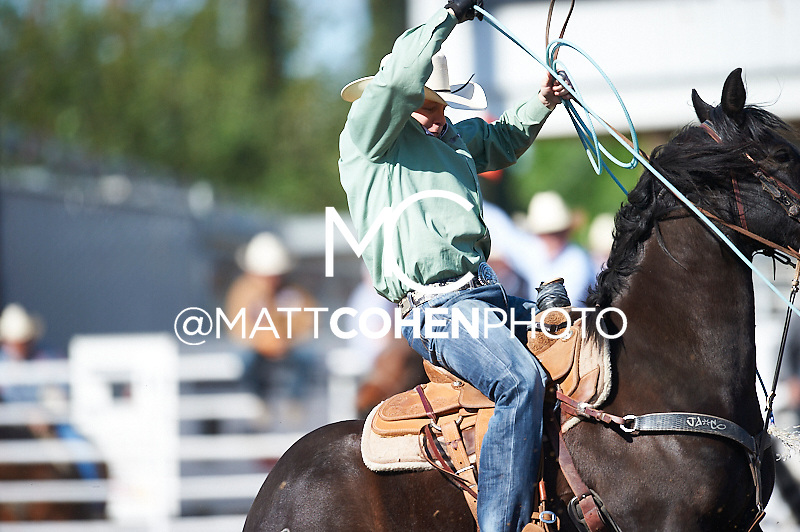 Team roper Jim Ross Cooper of Monument, NM competes at the Clovis Rodeo in Clovis, CA.<br /> <br /> <br /> UNEDITED LOW-RES PREVIEW<br /> <br /> <br /> File shown may be an unedited low resolution version used as a proof only. All prints are 100% guaranteed for quality. Sizes 8x10+ come with a version for personal social media. I am currently not selling downloads for commercial/brand use.
