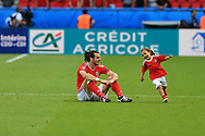 Wales v Northern Ireland   Euro 2016<br /> <br /> Andrew Orchard's Winning entry in the Wales Inspirational 'get in' category of the Vauxhall UK National Teams photographer of the year 2016 competition