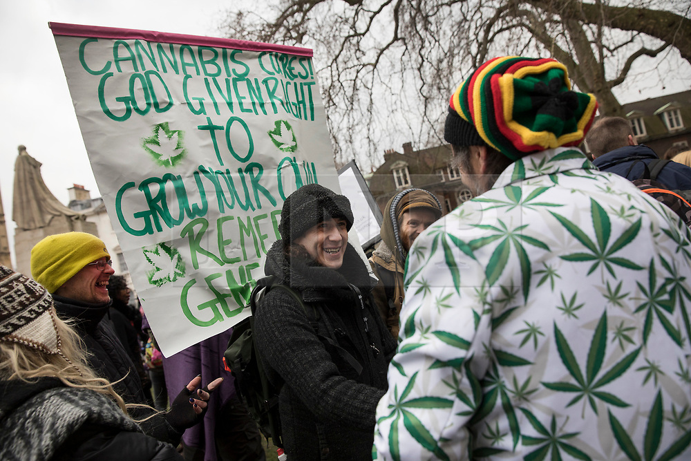 © Licensed to London News Pictures. 23/02/2018. London, UK. Campaigners near Parliament hold a demonstration in support of cannabis for medicinal use - as MPs debate it's use in The House of Commons. Photo credit: Peter Macdiarmid/LNP