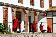 Young novice monks in brown robes outside the classrooms of the state monastic school at Dechen Phodrung Monastery. They are below the whitewashed stone wall of the old Dzong. Thimpu, Druk Yul, Bhutan. 13 November 2007.