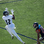 Justin Walker, a freshman wide reciever for Fullerton College, prepares to catch a pass during a regular season game against Orange Coast College on November 5, 2016.  Fullerton won the game 35-14 at LeBard Stadium.