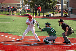 NORMAL, IL - April 08: Umpire Phil Pupillo crouches to observe a pitch to Jordan Libman and catcher Dawsen Bacho during a college baseball game between the ISU Redbirds  and the Sacramento State Hornets on April 08 2019 at Duffy Bass Field in Normal, IL. (Photo by Alan Look)
