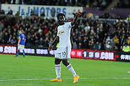 Wilfried Bony of Swansea city celebrates after he scores his teams 2nd goal.  Barclays Premier league match, Swansea city v Leicester city at the Liberty stadium in Swansea, South Wales on Saturday 25th October 2014<br /> pic by Andrew Orchard, Andrew Orchard sports photography.