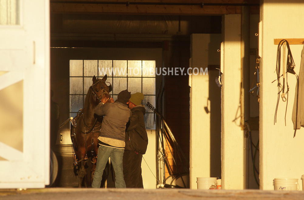Town of Wallkill, New York  - Two men prepare a harness racing horse to work out on the track at the Mark Ford Training Center on  Dec.12, 2011.