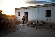 A Berber women tends to her sheep in a remote village in central Tunisia.