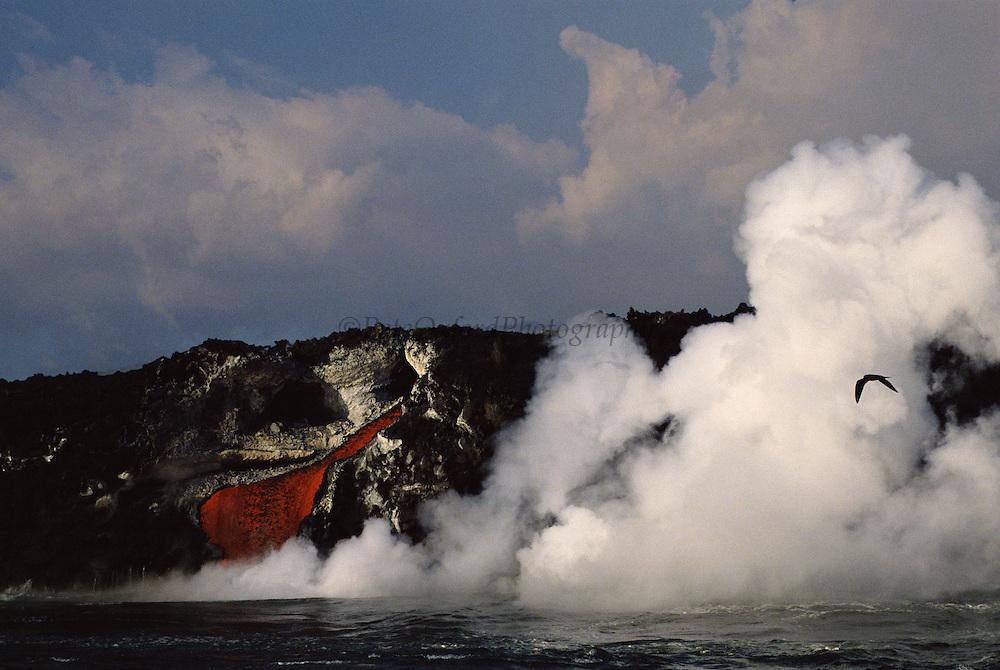 Volcanic Eruption - February 1995<br /> Cabo Hammond<br /> Fernandina Island, Galapgos, ECUADOR. South America