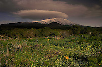 Western part of the Etna volcano, Sicily, Italy