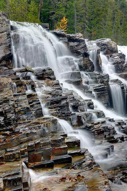 Waterfalls tumbling over layered sedimentary rocks of McDonald Creek, Glacier National Park Montana USA