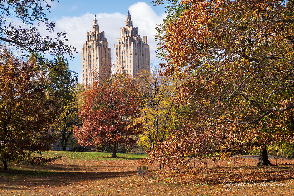 Area north of the Reservoir in Central Park with a view of the El Dorado apartment towers.
