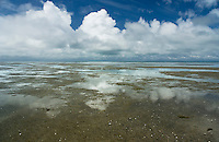 reflections of clouds during low tide at Farewell Spit, New Zealand