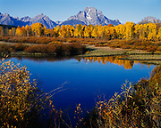 Mount Moran towering beyond aspens along Oxbow Bend of the Snake River, Grand Teton National Park, Wyoming.