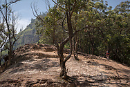 A young woman backpacking in Sri Lanka takes a break while hiking up to Ella Rock, a popular viewpoint on the outskirts of Ella, Sri lanka.