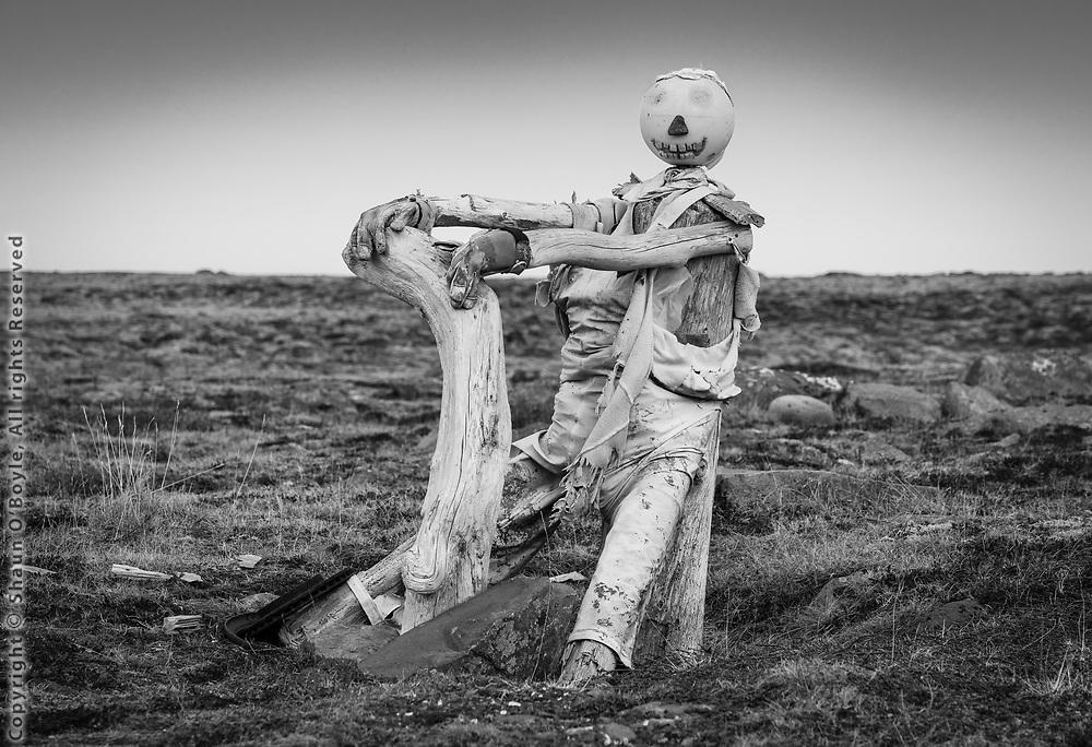 Roadside driftwood sculpture, near Arctic Circle, Melrakkasletta Peninsula