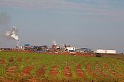 Itapagipe_MG, Brasil...Usina acucareira em Itapagipe, Minas Gerais...The sugar industry in Itapagipe, Minas Gerais...Foto: LEO DRUMOND / NITRO