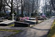 Nederland, Den Haag - 3 maart 2021: Begraafplaats Oud Eik en Duinen.    Netherlands, The Hague - March 3, 2021: Old Eik en Duinen Cemetery