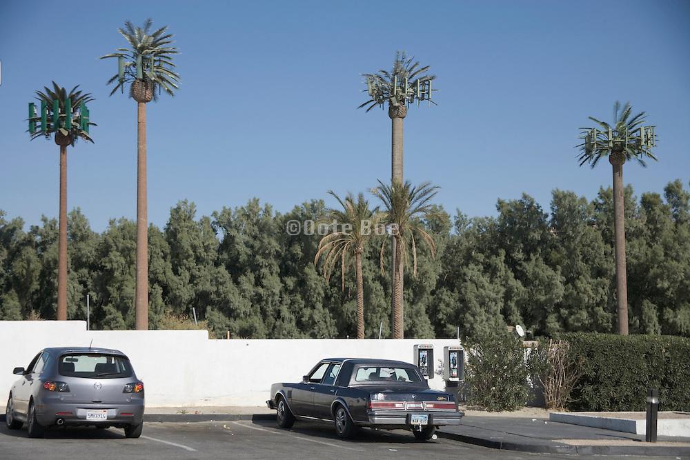 mobile phone antennas disguised as palm trees near Palm Springs CA America