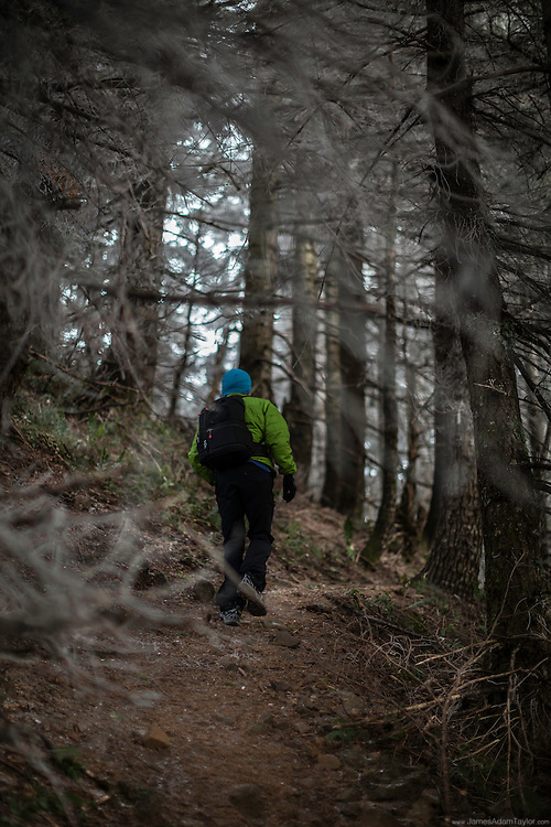 Ray Phung powers through an area of wooded trail near the summit of Table Mountain. Wholly in the the clouds the exposed section of forest is encased in a white coating of hoar frost.