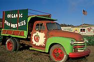 Old produce truck in strawberry fields, Fambrini's Produce Stand, Davenport Santa Cruz County coast, California